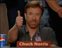 I Approve Meme - image 3885 chuck norris approved jpg cwa character wiki