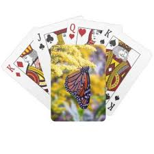 monarch butterfly on goldenrod cards family gifts