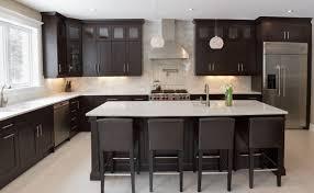 Line Kitchen Cabinets Cabinets U0026 Storages Black Stylish Contemporary L Shaped Kitchen
