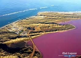 Pink Lake Pink Lake Flyover Tour Geraldton Air Charter Reservations