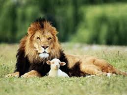 were animals meant to be our food the greatest story ever told