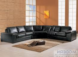 Leather Couch Designs Living Room Ideas For Black Leather Couches Militariart Com