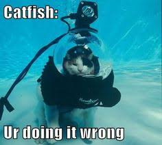 Scuba Meme - some of the best scuba diving memes submerged media