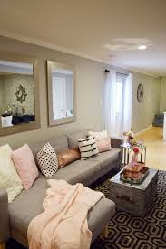 Basement Living Room Ideas Apartments Comely Basement Living Room Ideas Small Paint Colors