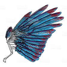 sacred or bird wing symbolism of lightness spirituality heaven
