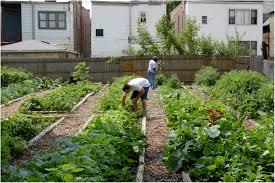 full image for wonderful small vegetable garden design credit llh