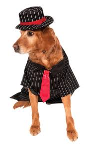 Mob Costumes Halloween Amazon Rubie U0027s Big Dog Mob Dog Costume Pet Supplies