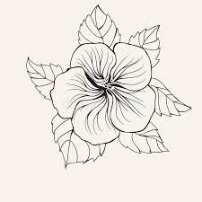 coloring pictures of hibiscus flowers hawaii hibiscus flower leaf for coloring book page for adult stock