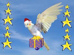 merry christmas from australia youtube
