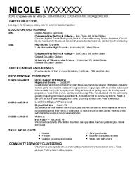 Obiee Admin Resume How To Write An Essay On A Story Theme Mainframe Experience Resume