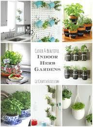 diy herb garden indoor gardening ideas