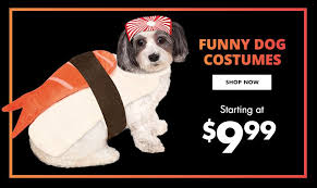 small large costumes pet costumes city