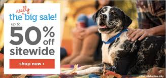 Halloween Costume Sale Petco 50 Sale Buy Doggie Halloween Costumes