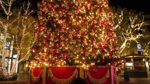 best christmas lights in the world the biggest christmas tree in the world vlogmas 9 youtube