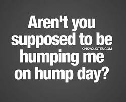 Sexy Hump Day Memes - 235 best 皸days of the week 皸 images on pinterest good morning