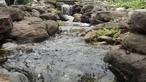 knee deep ponds more water