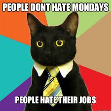 I Hate Mondays Meme - i hate mondays cat meme sao mai center