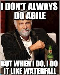 Project Management Meme - project management the agilesphere