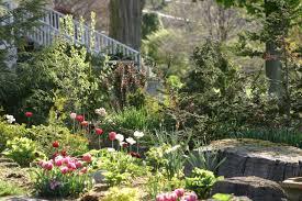 strathmore garden club