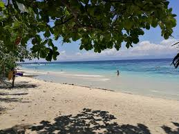 ravenala beach bungalows moalboal philippines booking com