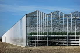 modern green house sustainable horticulture projects glasshouse home horconex