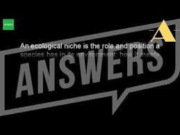 what is the definition of niche in biology