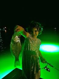 hydro glow fishing lights hydro glow seafloor sf100g underwater led dock lighting green fish light