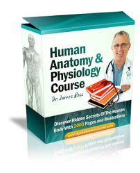 Anatomy And Physiology Pdf Books ø The 1 Human Anatomy And Physiology Course ø Learn About The