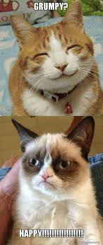 Create A Grumpy Cat Meme - grumpy happy grumpy cat vs happy cat make a meme