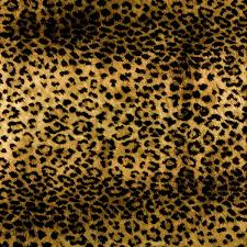 cheetah print wrapping paper leopard print wrapping paper the container store