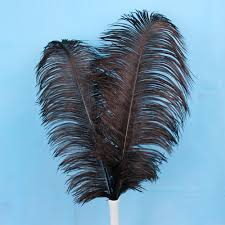 Where To Buy Ostrich Feathers For Centerpieces by Popular Teal Ostrich Feathers Buy Cheap Teal Ostrich Feathers Lots