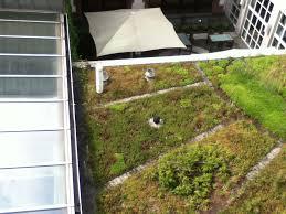 the roof hobbitholedweller