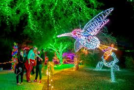 Zoo Lights Phx by Phoenix Zoo Lifhts Pictures To Pin On Pinterest Pinsdaddy