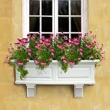 planters amazing window planter boxes window planter boxes