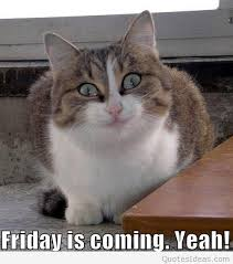 keep calm friday is coming weekend is coming sayings
