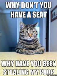 Lol Cat Meme - lolcats meme viral viral videos