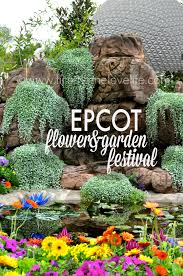 epcot flower and garden festival first home love life