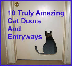 Interior Cat Door With Flap by 216 Best Cat Houses Catifying Images On Pinterest Cats Cat