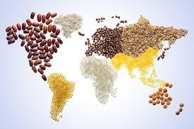 kosher kingdom breaking the fast around the world food