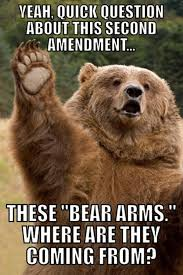 Funny Bear Meme - 27 funny animal memes 4 is hilariously inappropriate animal