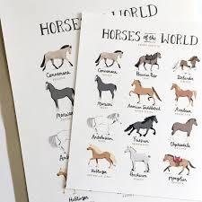 horses of the world art print u2013 paper pony co