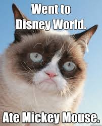 Mickey Mouse Meme - went to disney world ate mickey mouse grumpy cat disney