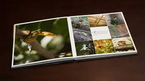 coffee table book singapore coffee table khaleddesign coffee table book printers singapore p