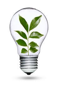 eco friendly light bulbs green light go the light bulb finding phone app
