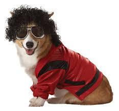 pup a razzi u0027s pop star dog fancy dress costumes are totally