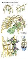How To Build A Trellis by Garden Structures A Trellis Whether Simple Or Elaborate Can