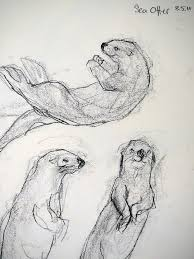 251 best art otters images on pinterest otters baby animals