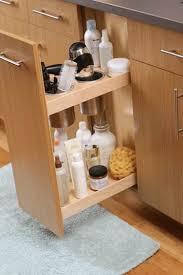 Bathroom Vanity Storage Organization Pin By This House On Storage Organization Ideas Pinterest