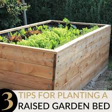 gardening tips and tricks you will love mommy moment