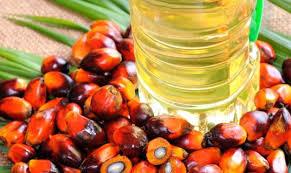 Minyak Cpo broker jual komoditas cpo dan minyak untuk industri